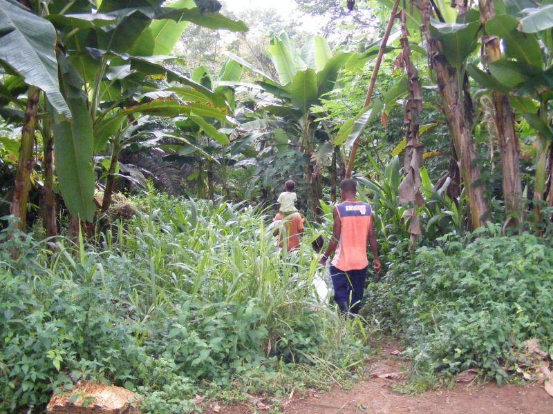C'est le genre de chemins qu'on emprunte pour se rendre sur les champs de cultures...l